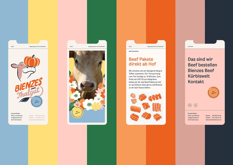 Bienzes Website Showcase Perspektiven Pixelfarm
